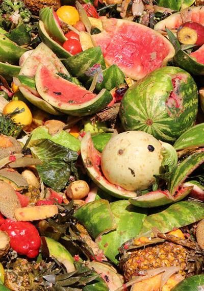 Food waste, o por qué no podemos darnos el lujo de botar comida