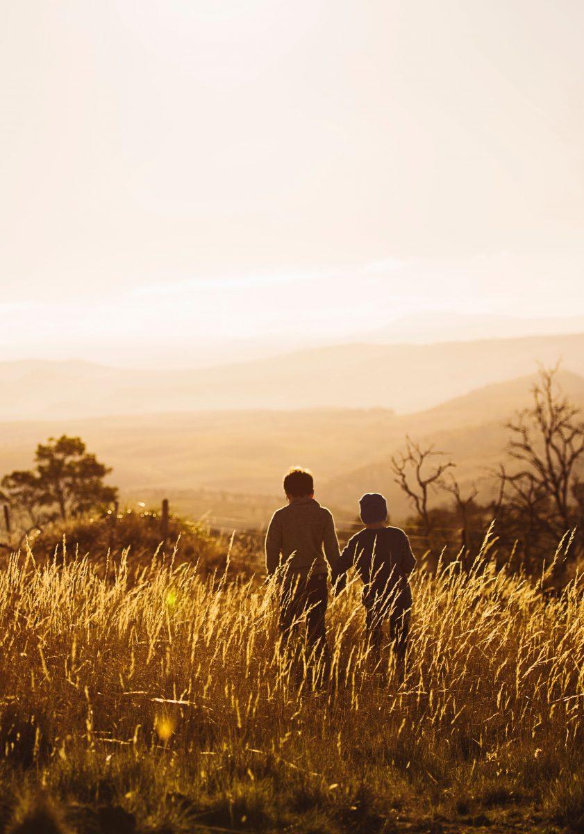 Habitar en comunidad, el arquetipo social que nos devela la naturaleza