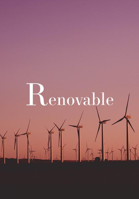 ¿Qué significa renovable?