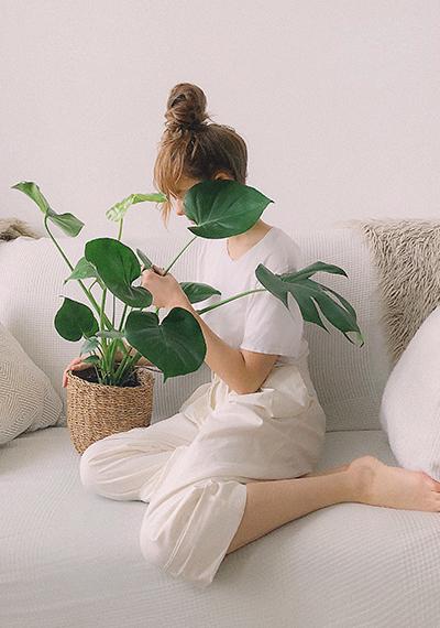 Cómo detectar las carencias nutricionales en las plantas