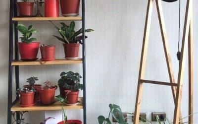 casa nueva sustentable