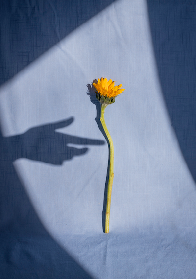 5 rituales para una nueva primavera